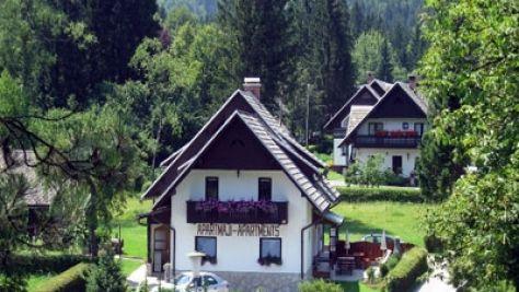 Ferienwohnungen Bohinj 1051, Bohinj - Objekt