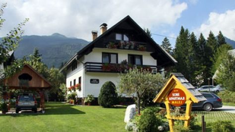 Rooms and apartments Bohinj 1078, Bohinj - Property