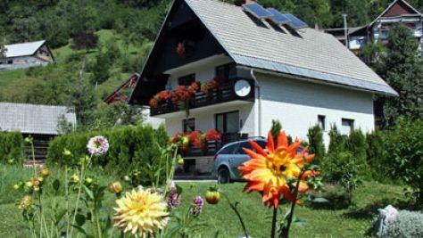 Zimmer und Ferienwohnungen Bohinj 1167, Bohinj - Objekt