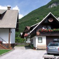 Apartments Bohinj 1183, Bohinj - Property