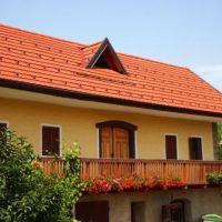 Tourist farm Pecel, Semič - Property