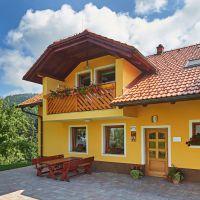 Tourist stay Gradišnik, Prevalje, Ravne na Koroškem - Courtyard