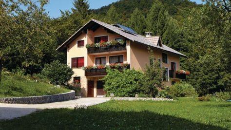 Apartments  15757, Cerknica - Exterior