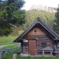 Brunarica na planini Grohot, Logarska dolina, Solčava - Exterieur