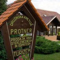 Turistična kmetija Protner, Pesnica - Property