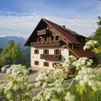 Domačija Ložekar, Alpske sanje, Logarska dolina, Solčava - Property