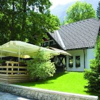Apartments Bohinj 17700, Bohinj - Property