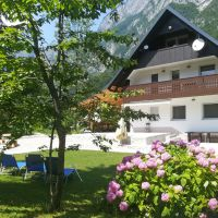 Holiday house Bohinj 17706, Bohinj -