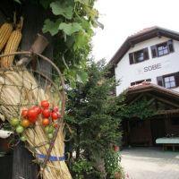 Turistična kmetija Frank - Ozmec, Ljutomer - Obiekt