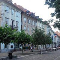 Dom Ljubljana 18739, Ljubljana - Obiekt
