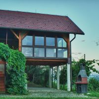 Holiday house Ljutomer 18807, Ljutomer - Property