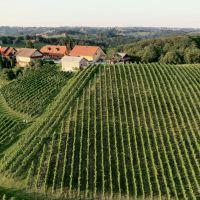 Wine & Tourism Bračko, Maribor - Okolí