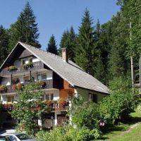 Camere e appartamenti Bohinj 2265, Bohinj - Alloggio