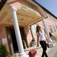 Hotel Grande, Celje - Objekt