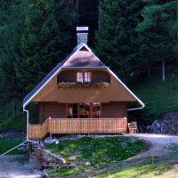 Počitniška hiša 2575, Luče - Экстерьер