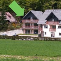 Apartments Bohinjsko jezero 8725, Bohinj - Property