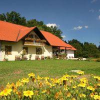 Agroturizmus Borko, Gornja Radgona - Szálláshely