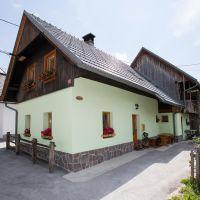 Apartmány Bohinj 8808, Bohinj - Exteriér