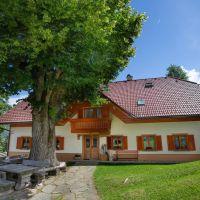 Turistična kmetija Visočnik, Ljubno - Zunanjost objekta