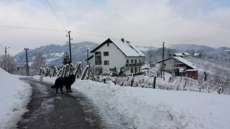 Agroturizmus Masnec, Podčetrtek, Olimje - Szálláshely