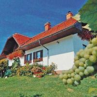 Turistična kmetija Pri Bračkotu, Maribor - Objekt