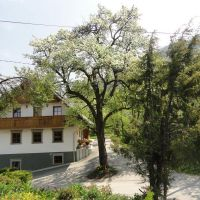 Turistična kmetija Dolinar Krainer, Bled - Objekt