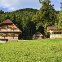 Turistična kmetija Petek, Gornji Grad - Objekt