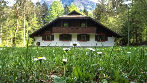 Ferienwohnungen Bohinj 9811, Bohinj - Exterieur